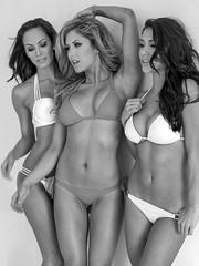 Women of the UFC (Eric Zumstein) Tags: ufc models