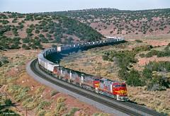 ATSF 236 East at Kayser, NM (thechief500) Tags: usa nm bnsf railroads kayser atsf clovissubdivision newmexico santaferailway sd75m abopass