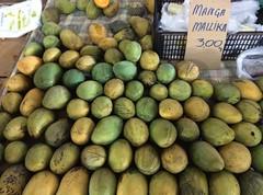 Mango heaven . . . (ericrstoner) Tags: mallika mango manga ceasa ceasadf farmersmarket brasília distritofederal mangiferaindica anacardiaceae