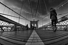 bABY sTEPS (wNG555) Tags: 2015 newyork newyorkcity brooklynbridge bw a6000 rokinon8mmf35fisheye fav25 fav50 fav100