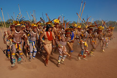 Indiens d'Amazonie (pguiraud) Tags: yawalapiti yawari javari serge guiraud parcduxingu parquedoxingu indian indio indien amazonie amazone amazon amazonia artducorps amérindiens amériquedusud brésil brasil brazil cérémonie cérémonies