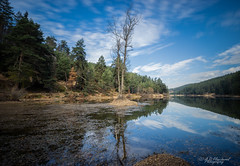 The vast blue beyond (Through_Urizen) Tags: bozcaarmut category landscape longexposure places turkey canon90d sigma1020mm canon outdoor landscapephotography travelphotography lake pond trees reflections bluesky clouds autumn colourful woodland forest tree