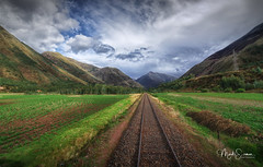 Accross the fields (marko.erman) Tags: perurail train peru andes latinamerica southamerica agriculture fields cultivated tracks rails panorama landscape perspective nearcuzco green mountains