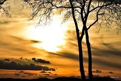 (Jehanmi) Tags: clouds nuages sky ciel arbres trees skyporn skyscape dreamscape skylover nikkor nikon scenery photography landscapephotography landscape sunrise sunset nature