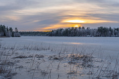 Frosty but bland sunrise (Arttu Uusitalo) Tags: january morning icy lake lakescape landscape clouds cloudy sky sunrise sony a6500 frosty woods forest ostrobothnia north finland