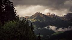 Kleinwalsertal (Netsrak) Tags: alpen alps baum berg berge bäume europa europe landschaft natur nebel stimmung wald fog landscape mist mood mountain mountains nature tree woods