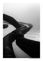 """""""Dans Les Traces Du Poulpe Ou Pour L'Attendrir Faut Taper Dessus... 33"""" (TBWLC Photography) Tags: fdrouet tbwlc nb bw monochrome saintnazaire penhoët nikon d750"""