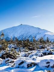 Śnieżka (n_kot) Tags: karpacz landscape krajobraz trekking winter wycieczka zima śnieżka śnieg