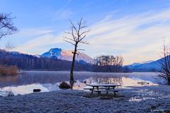 Pause pique nique ... au frais😁 (Savoie 01/2020) (gerardcarron) Tags: arbres canoneos80d givre lacsthélène savoie winter hiver