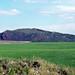 Rhyolitic tuff cone (Late Pleistocene, ~50 ka; North Cone, Central Dome Field, Idaho, USA)