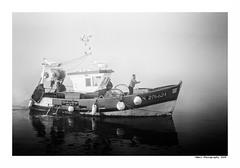 """""""Dans Les Traces Du Poulpe Ou Pour L'Attendrir Faut Taper Dessus... 35"""" (TBWLC Photography) Tags: fdrouet tbwlc nb bw monochrome bateau ship boat saintnazaire myst brume penhoët nikon d750"""