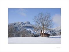 Una mañana de invierno (E. Pardo) Tags: invierno winter mañana morning früh nieve snow schnee paisaje landscape landschaft luz licht light steiermark austria europa
