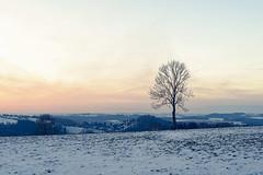 Hiver - Vue sur Chaply (Esneux - Sprimont) 1 (Nicopope) Tags: paysage landscape landschaft landskap hiver sprimont esneux nikon nature nuages neige fantasticnature