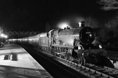 6989 'Wightwick Hall' (1948) (Roger Wasley) Tags: 6989 wightwickhall br westernregion modifiedhall class 460 shackerstone station steam engine locomotive train british railways leicestershire bw mono monochrome night battlefieldline