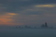 Fog (ulbespaans) Tags: fog foggy mood moody nature landscape tree sky clouds cloud sunrise color colorful landscaphotography scenic polder horizon zen vastness vast