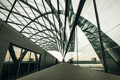 Elbbrücken_8586 (experience to discover) Tags: hamburg deutschland germany hafenstadt hafencity brücke bridge ubahn bahn train elbbrücken architektur architecture