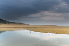 Rain Clouds and Reflections - Early Morning Waterscape (Merrillie) Tags: daybreak wamberalbeach sand sunrise cloudy dawn surf centralcoast wamberal morning newsouthwales clouds earlymorning nsw rainclouds beach ocean lagoon sky landscape coastal australia outdoors waterscape nature coast water seaside