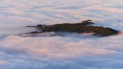Island of Dreams (Oliver Zillich) Tags: island dreams fog blackforest sunset art oliverzillich