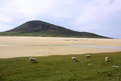 Isle of Harris: Scarista Beach - Sgarasta Mhòr Beach (Helgoland01) Tags: westernisles outerhebrides alba scotland schottland lewisandharris atlantik atlantic landschaft landscape beach strand