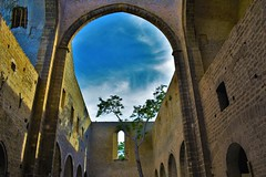 Santa Maria dello Spasimo (fotoflo86) Tags: palermo sicily sicilia italia italy italien church chiesa santa maria dello spasimo ruin kalsa cielo sky tree