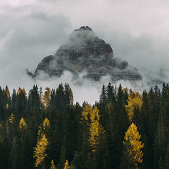 Impressioni dalle Dolomiti № 25 (One_Penny) Tags: dolomiten italien italy alps dolomites landscape mountains mountainscape nature southtyrol dolomiti trees forest colors autumn fall cloud cloudscape peak composition square