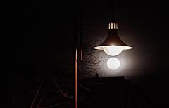 Mondsüchtig (Froschkönig Photos) Tags: canoneos70d efs18135 mond moon luna markranstädt nacht night licht light