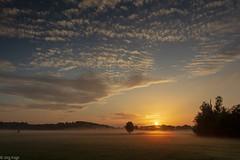 Der neue Tag ist da (Jörg Kage) Tags: deutschland germany saarland natur nature landschaft landscape baum bäume tree trees wolken clouds nebel misty fog feld himmel sky sonne sun sunrise sonnenaufgang canon canonlens canoneos700d eos700d