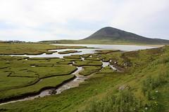 Isle of Harris: Salt Flats bei Northton (Helgoland01) Tags: westernisles outerhebrides alba scotland schottland lewisandharris atlantik atlantic northton