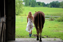 Barn Exit to Meadow Paradise (Scott RS) Tags: summer horse meadow green brown peace barn beautiful love bond serenity tail dress slender