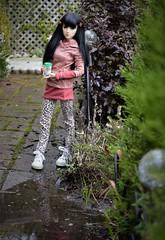 DSS for DR (Scarlett Empress) Tags: elfdoll rainydoll hazy