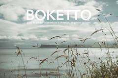 Boketto (Graella) Tags: words palabras boketto projects2020 15palabras2020 landscape irlanda ireland paisaje cielo sky clouds hierba grass herb mar oceano sea ocean horizonte skyline travel 15palabras2020graella