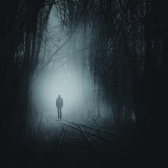 find your way 2 (Dyrk.Wyst) Tags: trees thicket silhouettes dark backlight railway abandoned direction figure surreal misty monochrome
