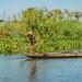 2019 - Vietnam-Avalon-Châu Đốc - 19 - Net Fishers - 3 of 5
