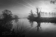 grey morning (Hans Zitzler) Tags: morning sunrise bw monochrom river naab bavaria oberpfalz schwandorf rockpaper