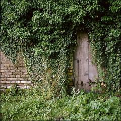Unknown Destination - Kodak Porta 160 (magnus.joensson) Tags: phototrip01 sweden swedish skåne summer july rolleiflex carl zeiss tessar 75mm kodak porta 160 exp 6x6 medium format c41 door
