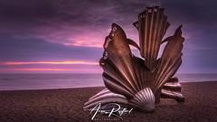 Aldeburgh Shell Sunrise [Explored] (Aron Radford Photography) Tags: yellow aldeburgh suffolk east anglia beach coast pebbles landscape seascape art shell sculpture metal sunrise dawn