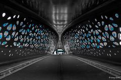 Antwerpen, Parkbrug. (What's Around) Tags: antwerpen parkbrug 1116mm fietsersbrug voetgangersbrug