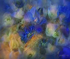 Hydrangea Dream (done by deb) Tags: digitalflowerpainting deepdreamgenerator digitalpainting digitalart hydrangeas pastello