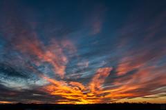 evening sky / @ 18 mm / 2020-01-12 (astrofreak81) Tags: sunset sun clouds explore light red sky orange dawn evening abend dresden heaven sonnenuntergang himmel wolken redsky sonne sylvio müller astrofreak81 sylviomüller 20200112