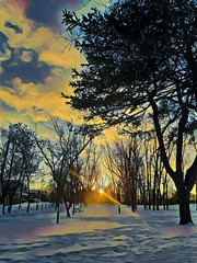 sunset in the trees (angelinas) Tags: creative artistic sunset trees snow prisma prismaapp digitalapainting digitalart photopainting photopmanipulation artisticphotography moody winter