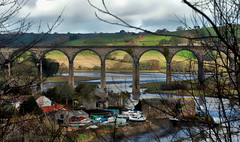 Lynher Viaduct (Allan Jones Photographer) Tags: lynherviaduct notterviaduct cornishviaduct rail railway boats riverlynher cornwall jetty farms fields animals landscape allanjonesphotographer canon5div trees branches nature england hdreffect hdr