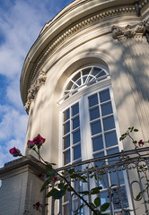 Dezember-Rose (Teelicht) Tags: braunschweig deutschland germany lowersaxony niedersachsen schloss schlossrichmond castle palace rose