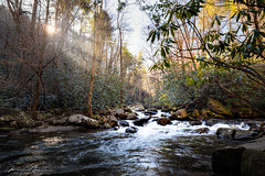 south mountain january 2020-294.jpg (McMannis Photographic) Tags: landscapeandnature river travel water northcarolina southmountainstatepark tokina1120f28 photography destination lens waterfall blueridge carolinas connellysprings creek explore fallingwater fluvial foothills mountain nc ncpark ncstatepark rapids southeast stream tourism whitewater