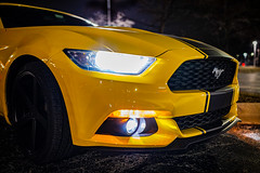 Mustang '15 in Supersnake Yellow, Close-up Front Side (aksoykaan1) Tags: motorsports sports sportscar automobile muscular mustang legendary night nightshot canon supersnake canon6dii canon6dmk2 canon6d2 canon6dmark2 sigma sigma35mm art 35mm favorite car racing