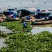 2019 - Vietnam-Avalon-Châu Đốc - 48 - Chau Doc River
