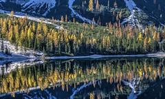 Riflessi sul lago (giannipiras555) Tags: lago riflessi autunno colori ottobre alba mattino panorama paesaggio natura montagna dolomiti altoadige nikon lake water alberi nature
