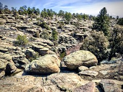 Castlewood Canyon State Park in Colorado (wjaachau) Tags: franktown travel scenery scenic park canyon landscape nature colorado castlewoodcanyonstatepark