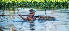 2019 - Vietnam-Avalon-Châu Đốc - 39 - Vinh Te Canal Fisherman (Ted's photos - Returns Early February) Tags: 2019 châuđốc cropped nikon nikond750 nikonfx tedmcgrath tedsphotos vietnam vignetting fishing fisher fisherman fishnet wading inthewater man male 1people reflection waterreflection hat vinhtecanal wideangle widescreen