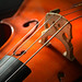 Cello Strings Stringed Instrument 2820989 Edited 2020