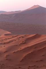 The Desert At Dawn (peterkelly) Tags: digital canon 6d africa namibia intrepidtravel capetowntovicfalls namibdesert namibnaukluftreserve sossusvlei dune45 dune morning dawn sunrise sandy sand